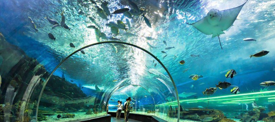 Tempat Wisata Populer di Manila
